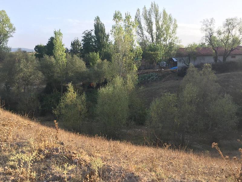 Bilecik Yenipazar Belkese Mahallesi'nde 3473 m2 Tarla