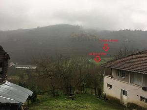 Sakarya Kocaali Şerbetpınarı Köyünde 7.982 m2 Fındıklık