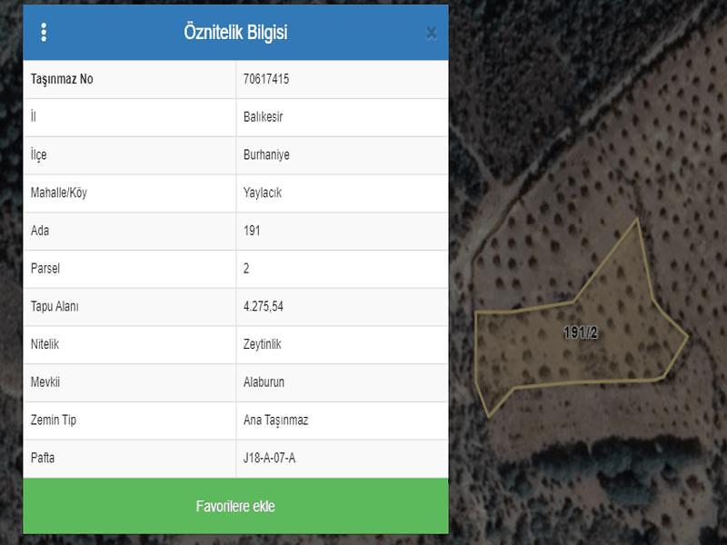 Balıkesir Burhaniye Yaylacık Mahallesi'nde 4275 m2 Zeytinlik (1162)