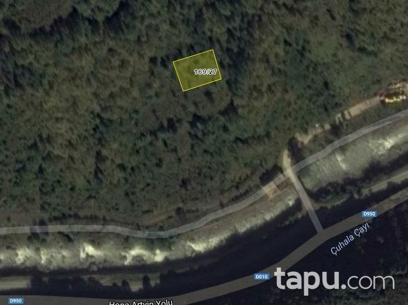 Artvin Borçka'da 4987 m2 3 adet Fındık Bahçesi