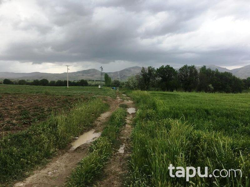 Afyonkarahisar Dinar Göçerli Köyünde 7.150 m2 Tarla