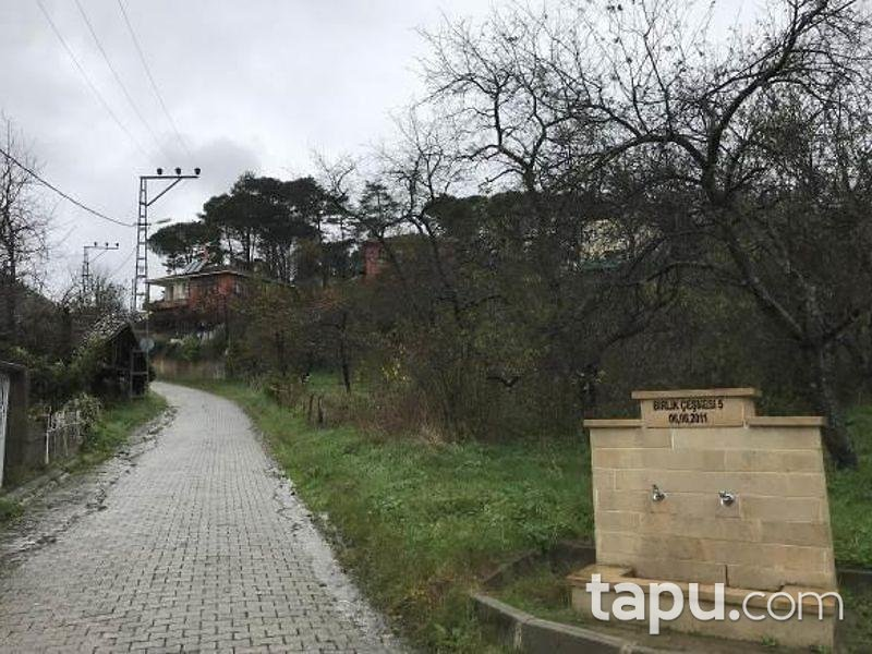 İstanbul Şile Gökmaslı Mahallesinde İki Katlı Kargir Ev