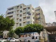 İskenderun Ziya Gökalp Caddesi Seküçoğlu İşhanı'nda İskanlı 29 m2 Ofis