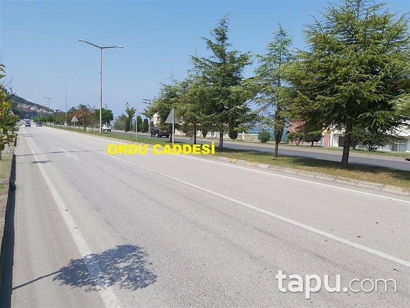 Ordu Gülyalı Yeniköy Mahallesi'nde 552m2 Konut İmarlı Arsa