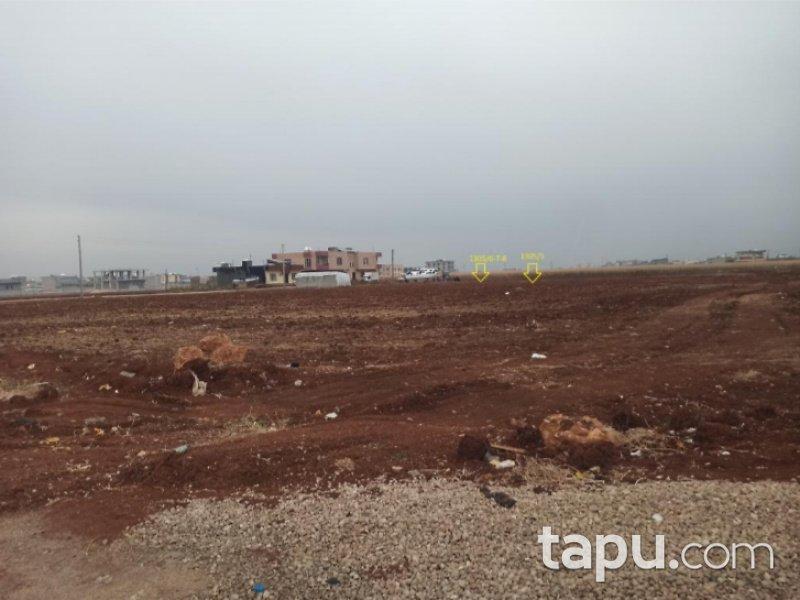 Mardin Kızıltepe Koçhisar Mahallesinde 793 m2 Konut İmarlı Arsa