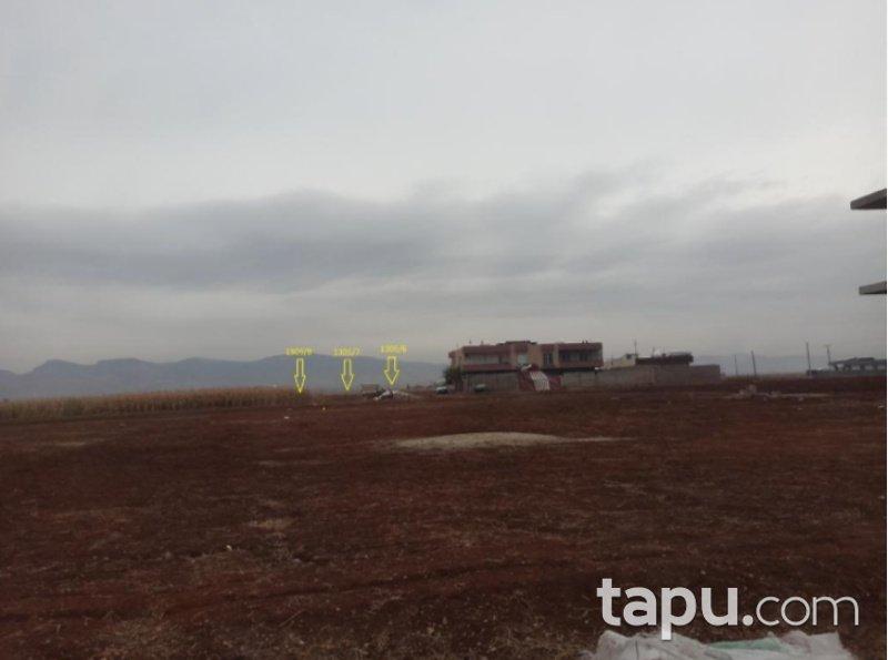Mardin Kızıltepe Koçhisar Mahallesinde 797 m2 Konut İmarlı Arsa