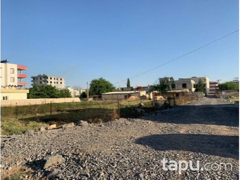 Şanlıurfa Suruç Aligör Mahallesi'nde 212 Tam Hisseli Konut İmarlı Arsa