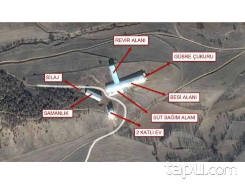 Gümüşhane Köse'de 3675 m2 Hazır Besi Çiftliği ve Arsası