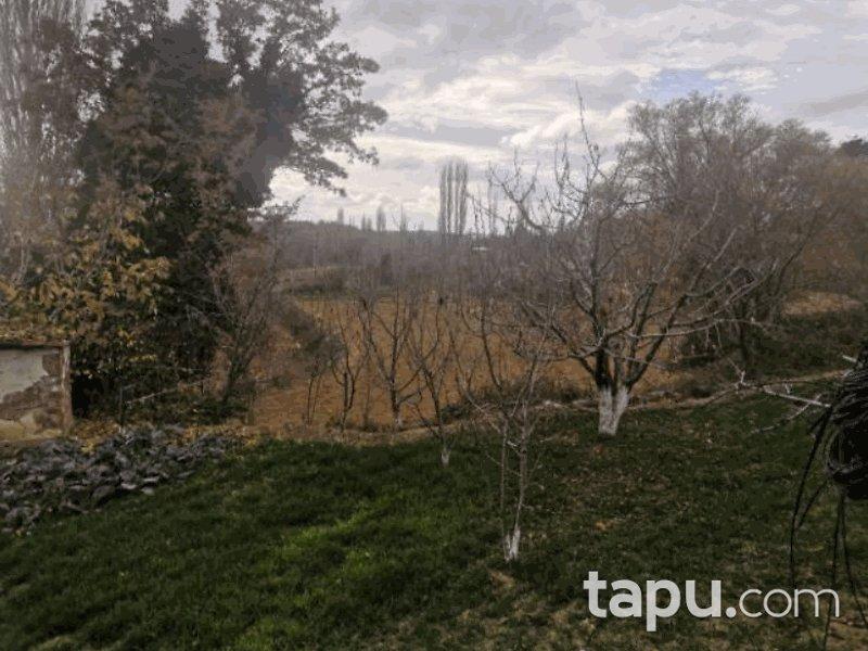 İzmir Kiraz Akpınar Mahallesi'nde 7051 m2 Tarla (522)