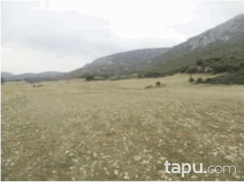 Isparta Keçiborlu İncesu Mahallesi'nde 1466 m2 Tarla (1067)