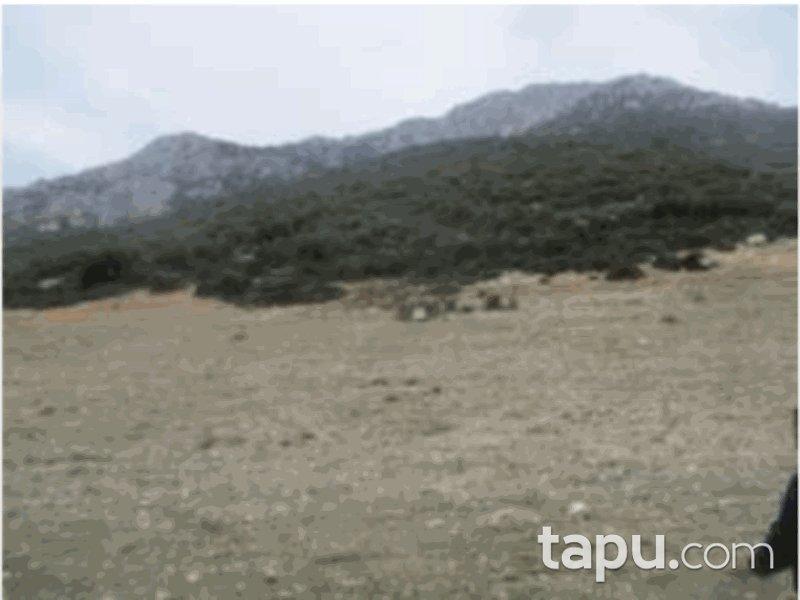 Isparta Keçiborlu İncesu Mahallesi'nde 2000 m2 Tarla (1068)