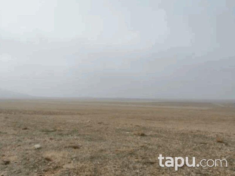 Konya Çumra Uzunkuyu Mahallesi'nde 41 Dönüm Tarla (1070)