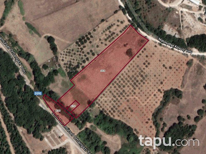 Bursa İznik Bayındır Mahallesi'nde 9621 m2 3 Adet Tarla