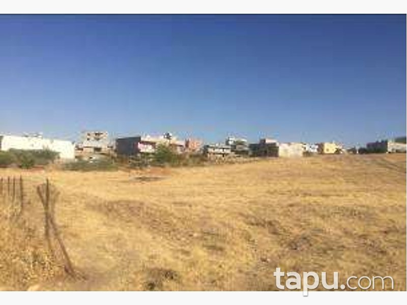 Siirt Kurtalan Beykent Köyünde 636 m2 Konut İmarlı Arsa