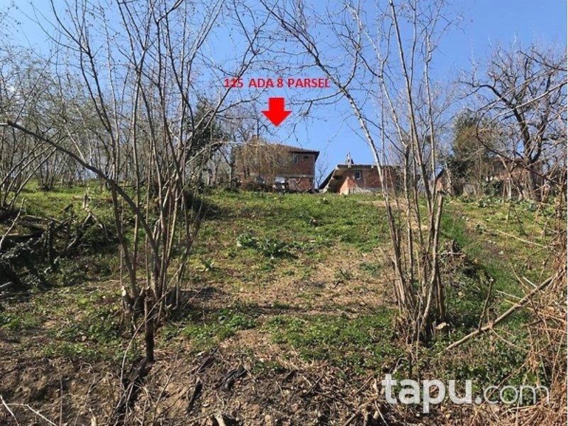 Düzce Akçakoca Tepeköy Mahallesi'nde 2 Katlı Müstakil Ev ve Arsası
