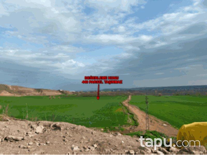 Diyarbakır Sur Bağıvar Mahallesi'nde 15 Dönüm Tarla
