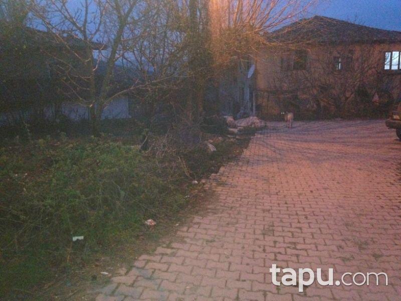 Bilecik Gölpazarı Söğütçük Mahallesi'nde 100 m2 Bahçe